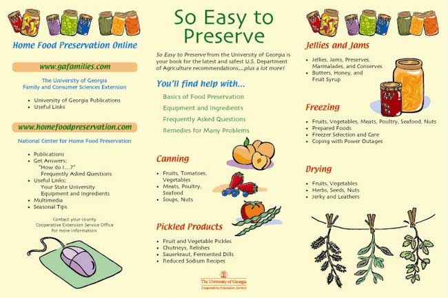 preserve_food