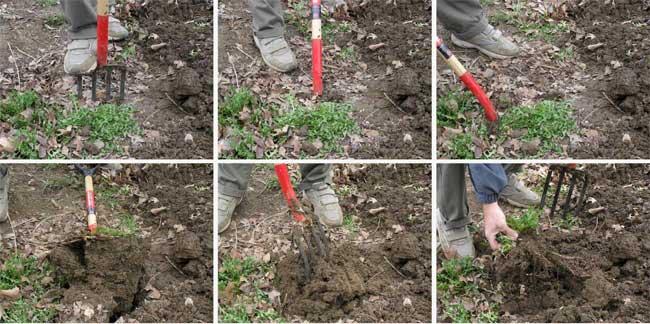 soil_prep